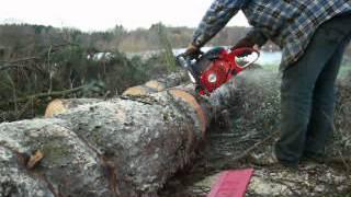 getlinkyoutube.com-DOLMAR 6400 D40cm Baum.flv