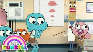 The Amazing World of Gumball   The Brain   Cartoon Network