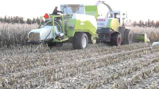 getlinkyoutube.com-Claas Jaguar 870 og Claas Quadrant 2100 ( Varde Maskinstation )