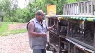 getlinkyoutube.com-Improved Rabbit Watering System
