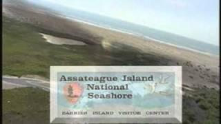 Beach TV Network Ocean City MD