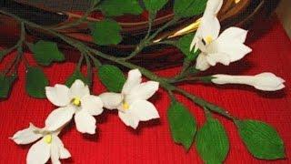 getlinkyoutube.com-Paper Flower Jasmine / Stephanotis (Flower # 13)