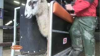 Combi Clamp Exmoor