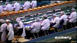 getlinkyoutube.com-Euroberry Corparate Video