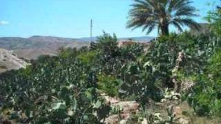 getlinkyoutube.com-أغاني جزائرية من التراث الشاوي