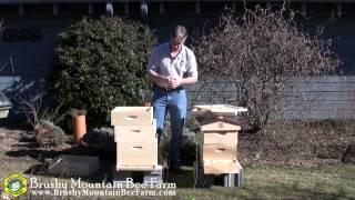 getlinkyoutube.com-Different Size Hive Bodies