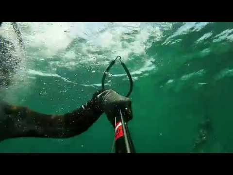 Spearfishing Guam: TT6 Island Dub