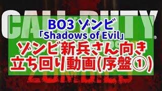 【BO3 ゾンビ】ゾンビ新兵さん向き立ち回り動画:序盤①【Shadows Of Evil】