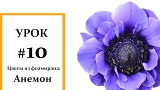 Анемон мастер класс, Фоамиран цветы, Мастер класс из фоамирана Foam Flouwers