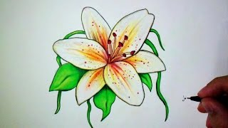 Download dessin tutodraw - Comment dessiner une fleur ...