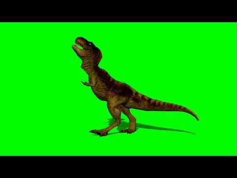 T-rex dinosaur runs  2 - green screen effect