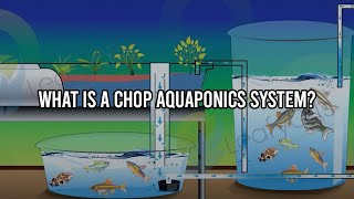 getlinkyoutube.com-What is a CHOP Aquaponics System?