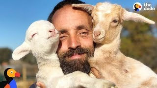 Goat Is An Only Child Until Her Dad Adopts A Baby Lamb | The Dodo