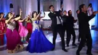 getlinkyoutube.com-Appan and Anita's Wedding Reception Dance