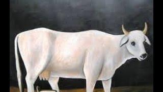 सपने में गाय देखने का मतलब