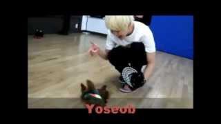 Laugh Funny of kpop idol!