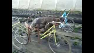 getlinkyoutube.com-Farm bicycle