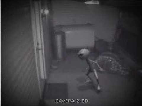Alien Caught On Camera