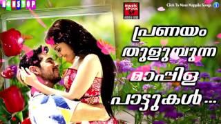 പ്രണയം തുളുമ്പുന്ന മാപ്പിള പാട്ടുകൾ|Romantic Mappila Songs|Mappila Pattukal|Super Hits Mappila Songs