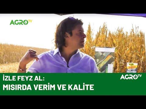Feyz Çiftliği Mısır Tarla Günü 2 / AGRO TV