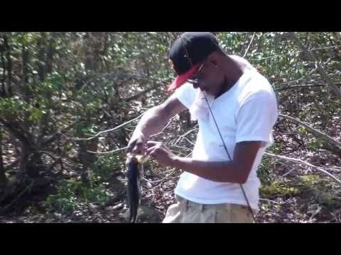 Fishing report - Bass fishing New Jersey 2013 Video