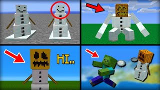 getlinkyoutube.com-✔ Minecraft: 15 Things You Didn't Know About the Snow Golem