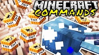 NUKE & BESTER COMMAND EVER! | Minecraft Commands #11 | ConCrafter