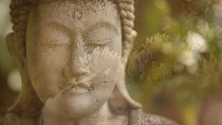getlinkyoutube.com-You Are Silence Itself ~ Guided Meditation with Sri Mooji
