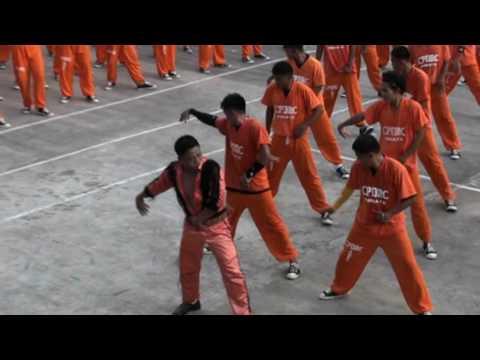 Ples iza rešetaka