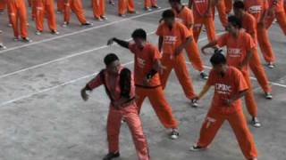 getlinkyoutube.com-CPDRC Philippines -Michael Jackson Thriller - NOV 2009