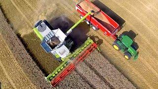 getlinkyoutube.com-Claas Lexion 780 Terra Trac - Demo bij Koninklijke Maatschap de Wilhelminapolder