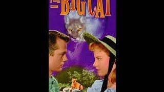 getlinkyoutube.com-The Big Cat (1949) Full Movie