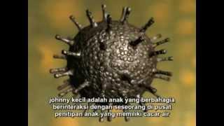 getlinkyoutube.com-Sistem Imun tubuh manusia