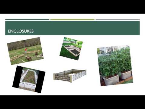 Lesson Plan   Square Foot Gardening