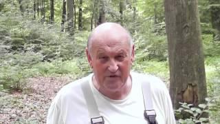 getlinkyoutube.com-Hinweis zur neuen Site von Holger Strom