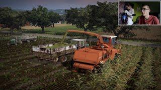 getlinkyoutube.com-Let's Play Farming Simulator 2015 #4 ㋡ Kiszonka, beka w luj i siostra w pokoju.. ☆ MafiaSolec