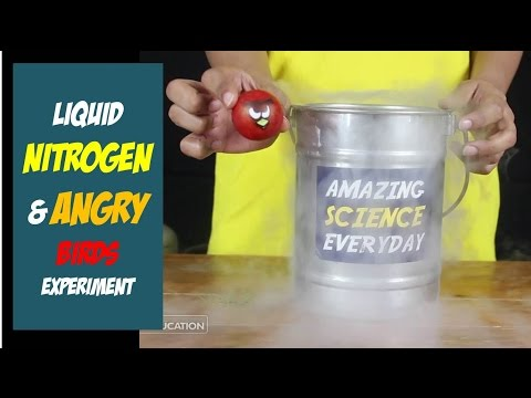 Liquid Nitrogen Science Freeze Experiment with Angry Birds