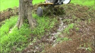 getlinkyoutube.com-Ενσωμάτωση ζεόλιθου σε ελαιόδεντρα. Πρόδρομος, Μεσσηνίας. 30/01/2014