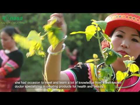 Onasa mang lại nét rạng ngời cho vẻ đẹp Á Đông