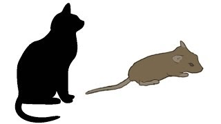 getlinkyoutube.com-CAT GAMES - MOUSE HUNT (FOR CATS ONLY)