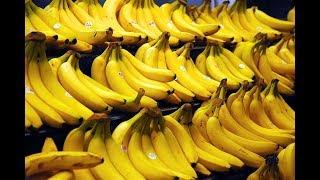 getlinkyoutube.com-هل هذه الطريقه تطيل  فعلا عمر الموز  ?