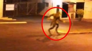 getlinkyoutube.com-5 Mythical Creatures Caught On Camera & Spotted In Real Life!