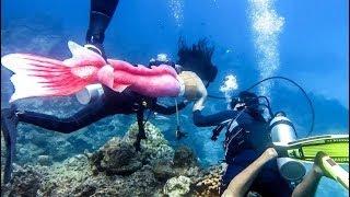 getlinkyoutube.com-เบื้องหลังครีบนี้หัวใจมีเธอ ฉากใต้น้ำ ก่อนฉายจริง