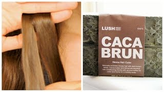 getlinkyoutube.com-Testing LUSH Henna on Brown Hair || Caca Brun