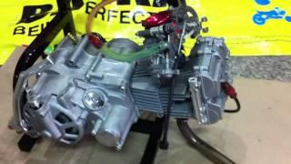 getlinkyoutube.com-124cc DOHC 4 VALVE TAKEGAWA + FCR28 by BANKA.MOV