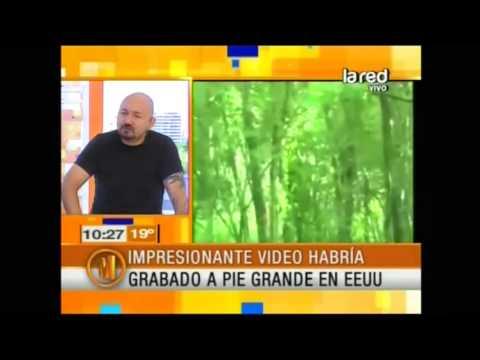 Freddy Alexis nos muestra increíbles videos de Pie Grande (Parte 1)
