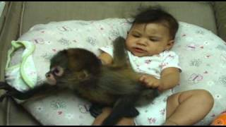 getlinkyoutube.com-baby jeannelyn playing with baby monkey.