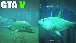 getlinkyoutube.com-Grand Theft Auto V - Play as a Fish - Shark, Dolphin, Stingray [GTAV] PS4