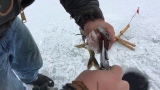 getlinkyoutube.com-Ice Fishing Maine 2016