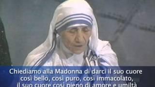 Madre Teresa a Bologna (1987)